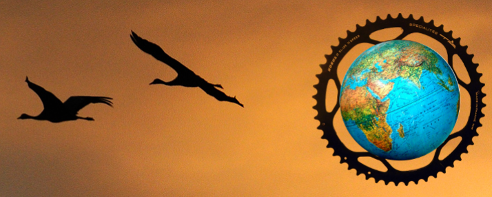 cyclo logo