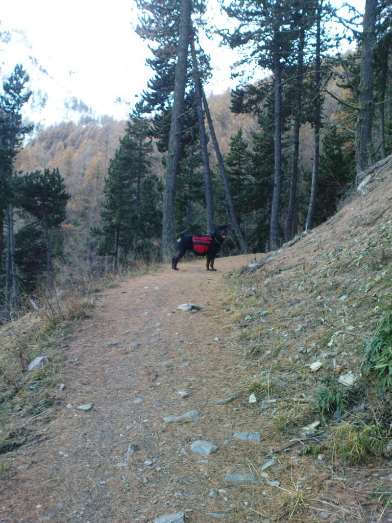 09 - Me, hiking 3